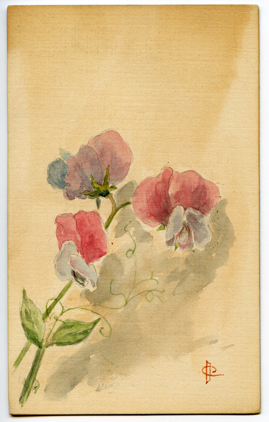 Handpainted_sweetpeas_sm